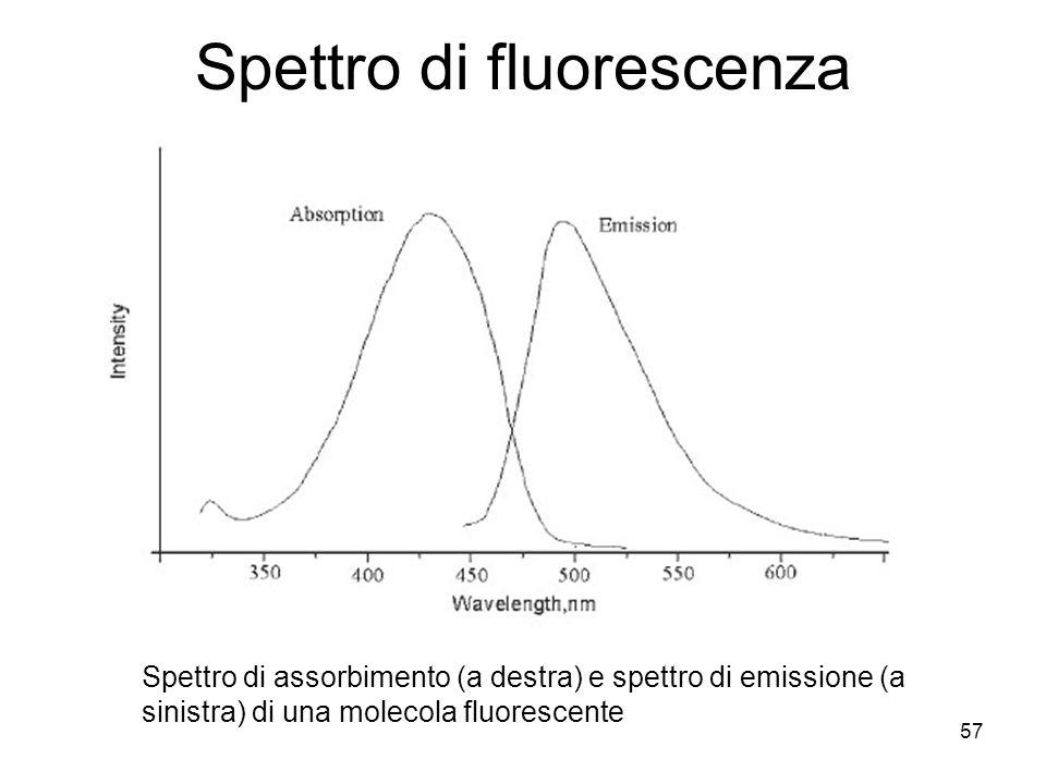 Spettro di fluorescenza