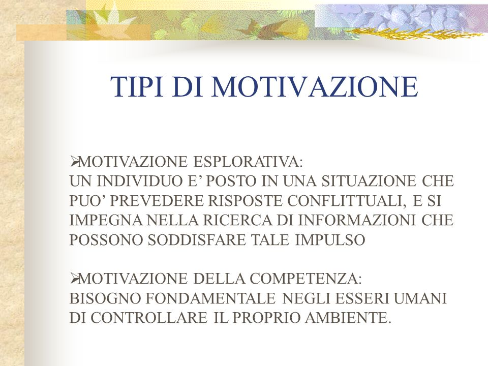 TIPI DI MOTIVAZIONE MOTIVAZIONE ESPLORATIVA: