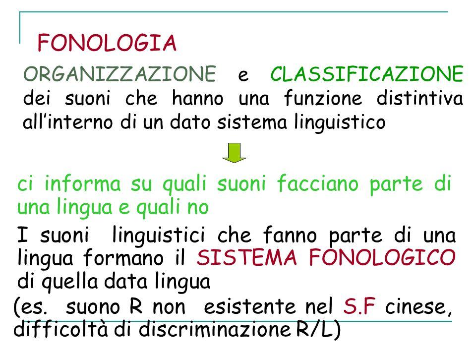 FONOLOGIA ORGANIZZAZIONE e CLASSIFICAZIONE dei suoni che hanno una funzione distintiva all'interno di un dato sistema linguistico.