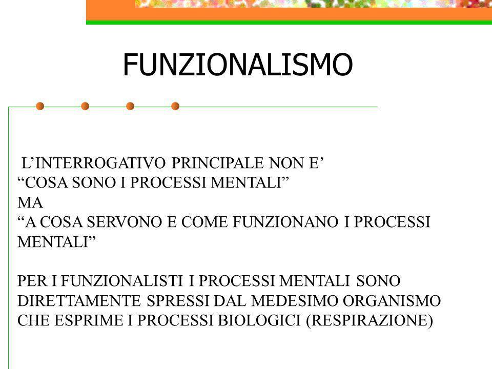 FUNZIONALISMO L'INTERROGATIVO PRINCIPALE NON E'
