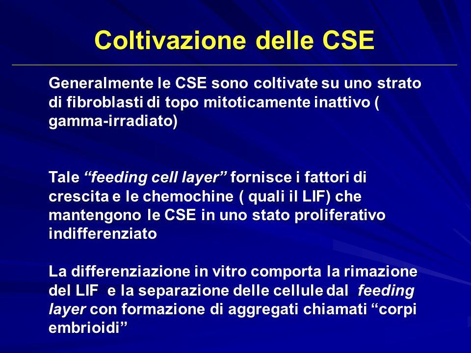 Coltivazione delle CSE