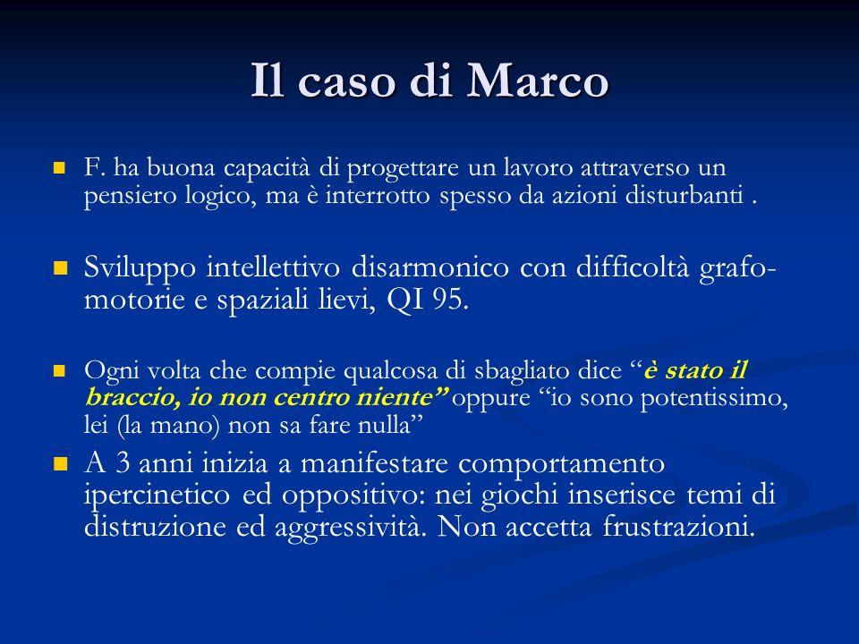 Il caso di Marco F. ha buona capacità di progettare un lavoro attraverso un pensiero logico, ma è interrotto spesso da azioni disturbanti .