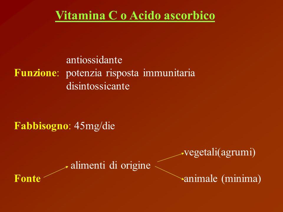 Vitamina C o Acido ascorbico