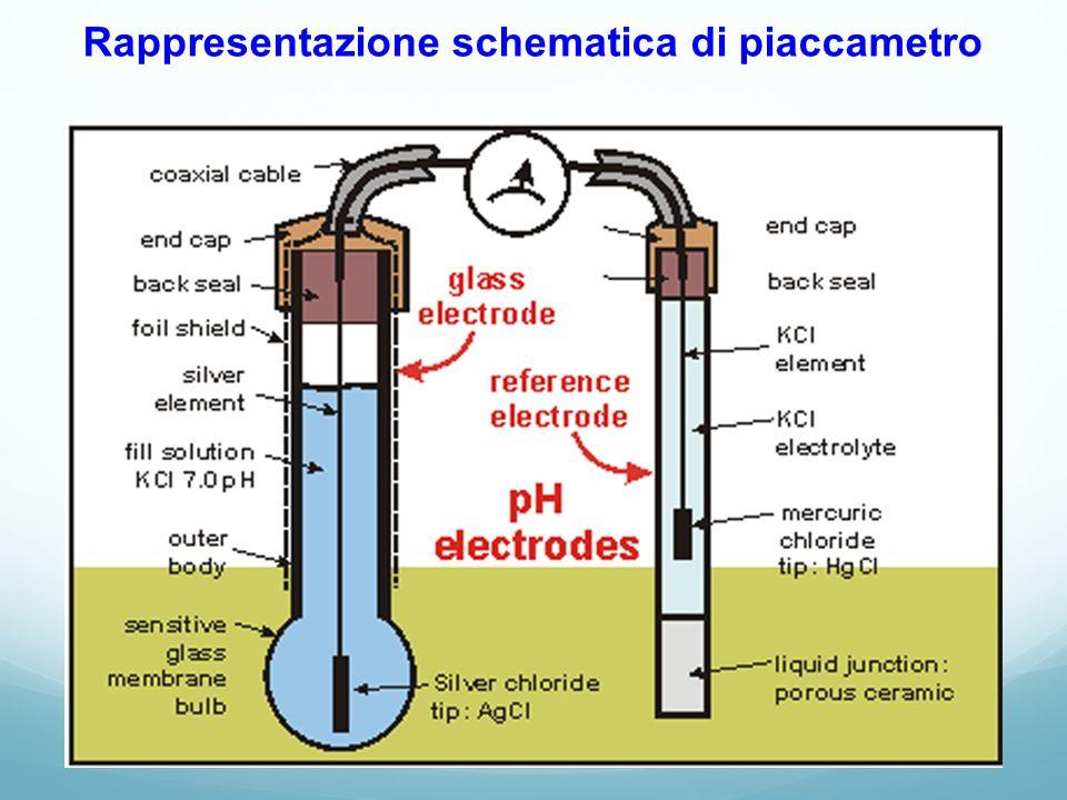 Rappresentazione schematica di piaccametro