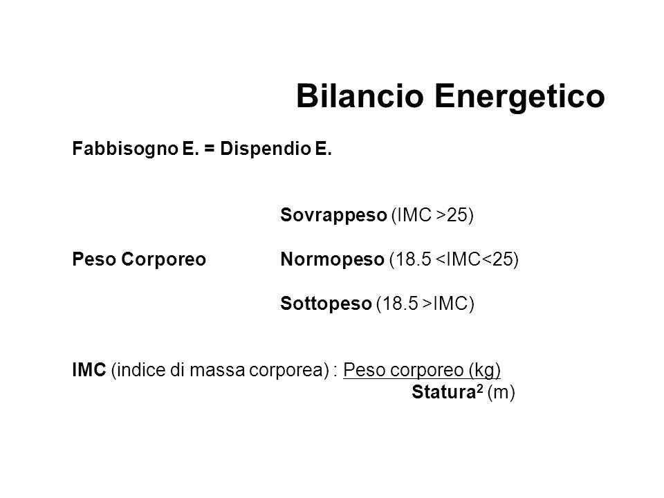 Fabbisogno E. = Dispendio E.