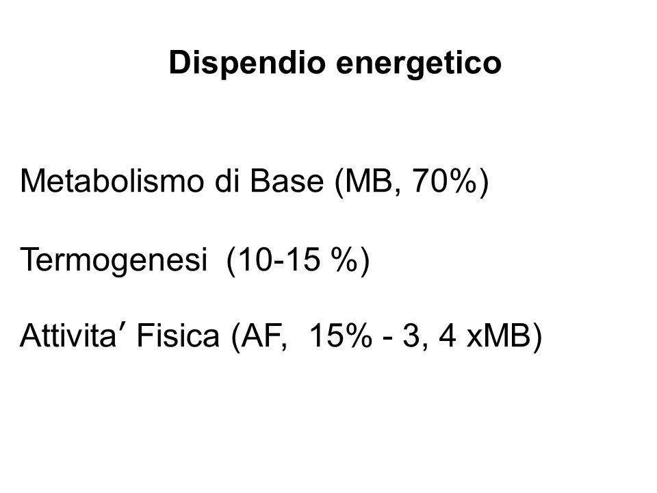 Dispendio energetico Metabolismo di Base (MB, 70%) Termogenesi (10-15 %) Attivita' Fisica (AF, 15% - 3, 4 xMB)