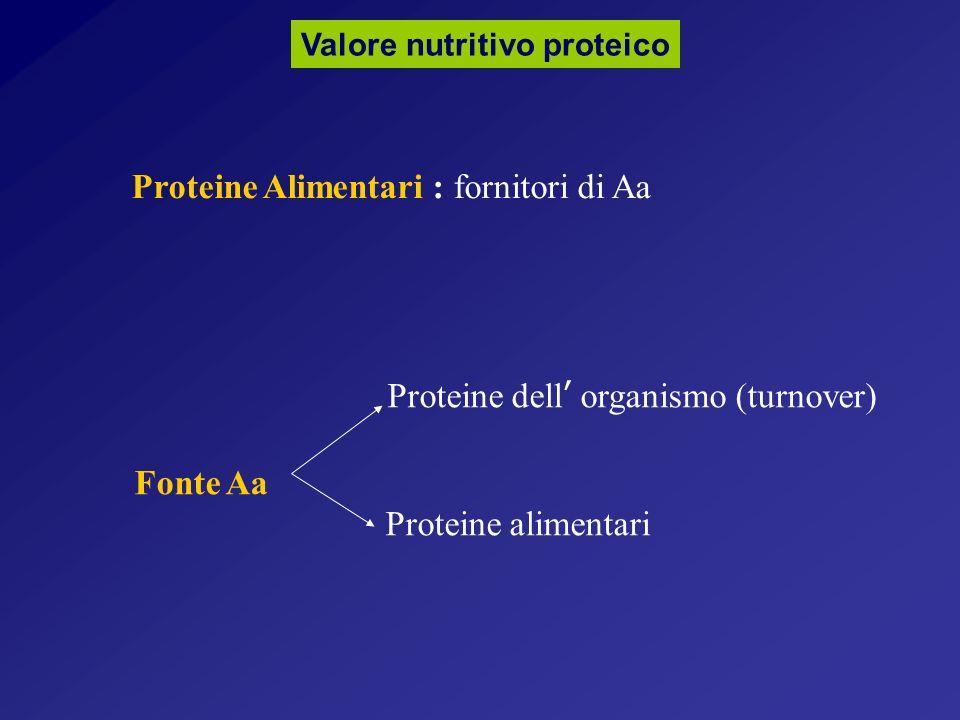 Proteine Alimentari : fornitori di Aa