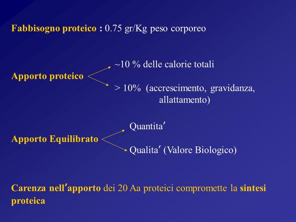 Fabbisogno proteico : 0.75 gr/Kg peso corporeo