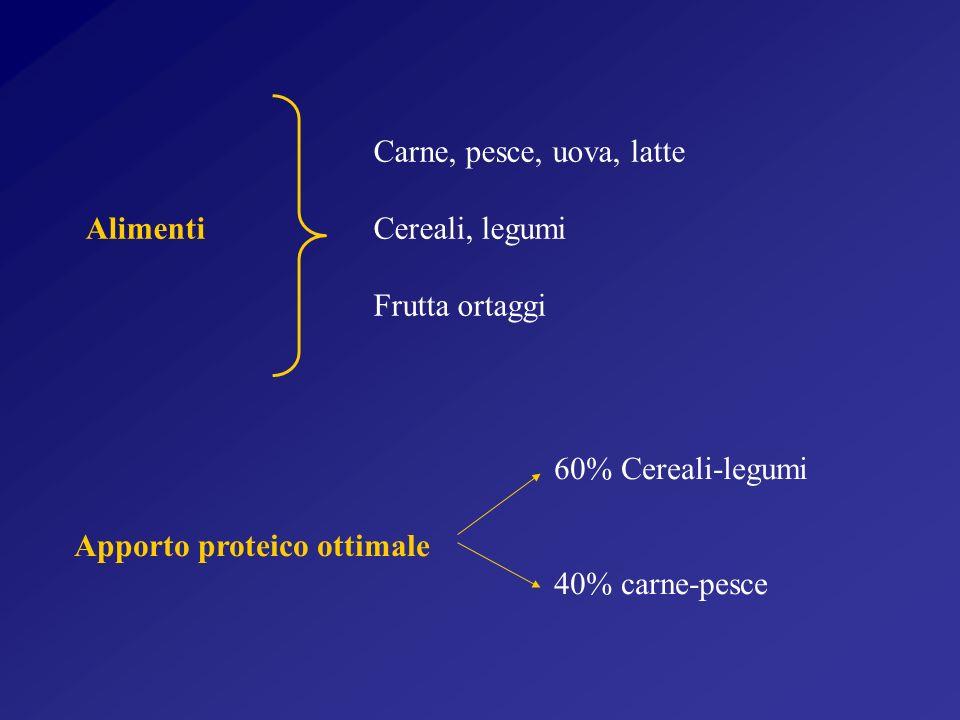 Carne, pesce, uova, latte Alimenti Cereali, legumi. Frutta ortaggi. 60% Cereali-legumi. Apporto proteico ottimale.