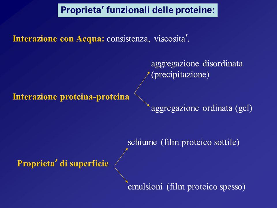 Proprieta' funzionali delle proteine: