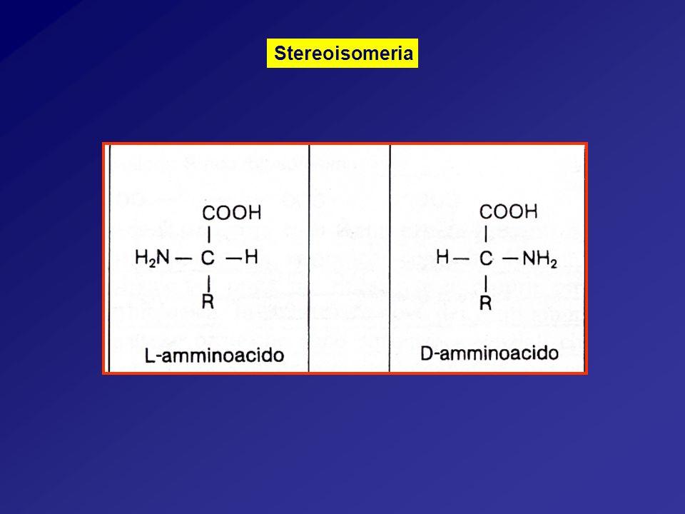 Stereoisomeria
