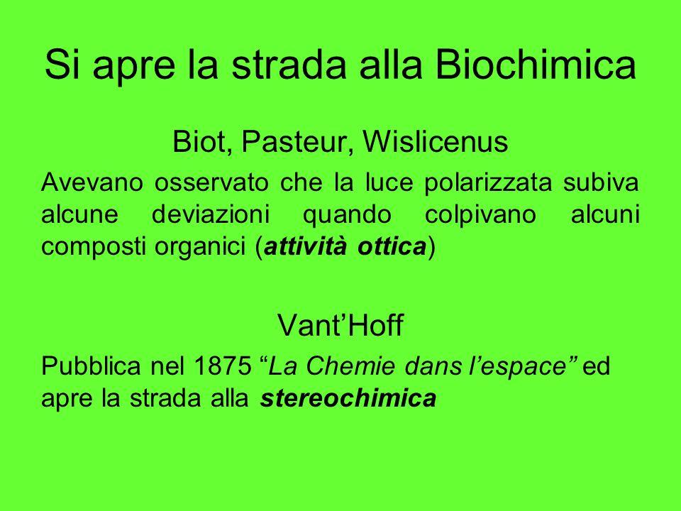 Si apre la strada alla Biochimica