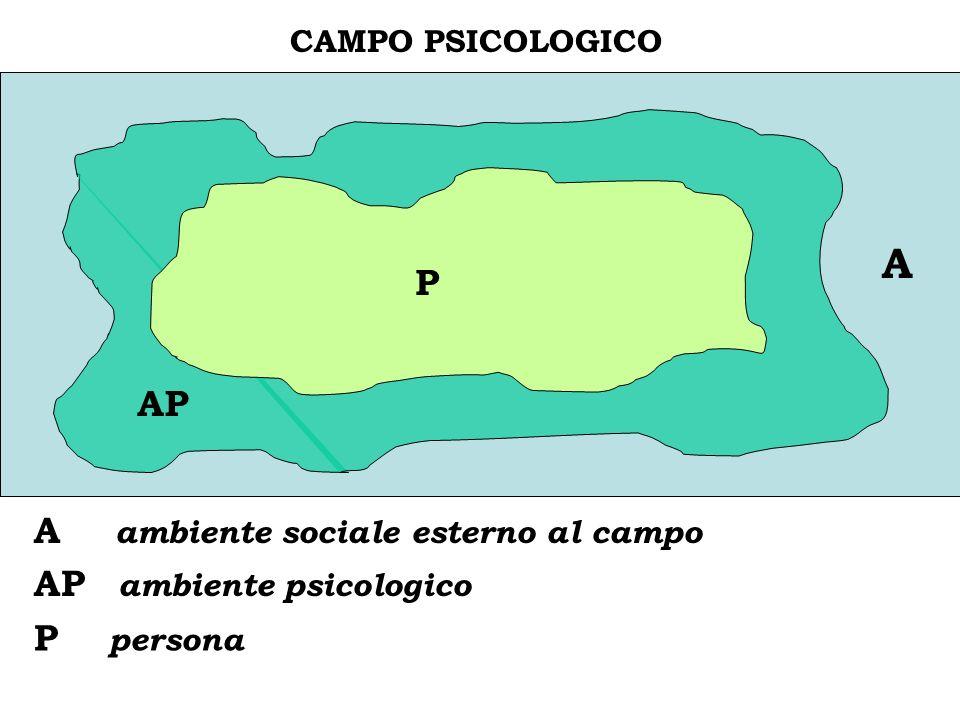 A C P AP A ambiente sociale esterno al campo AP ambiente psicologico