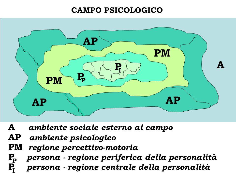 AP PM A P C P PM AP AP A ambiente sociale esterno al campo
