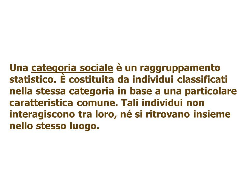 Una categoria sociale è un raggruppamento statistico