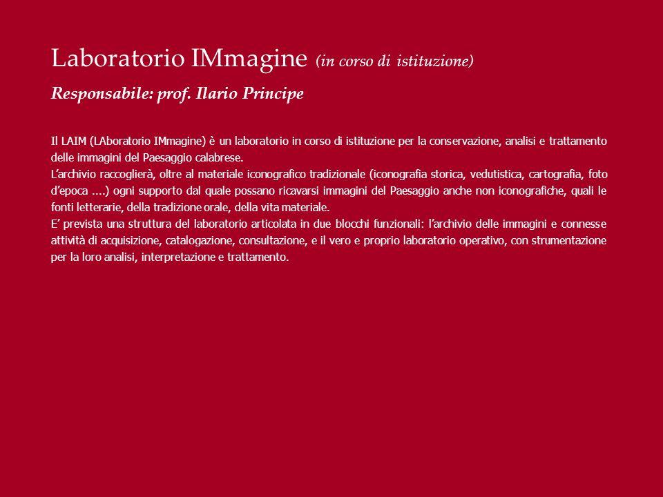 Laboratorio IMmagine (in corso di istituzione)