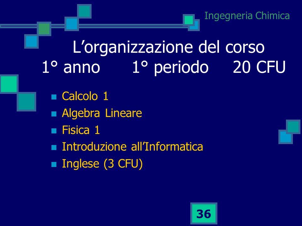L'organizzazione del corso 1° anno 1° periodo 20 CFU
