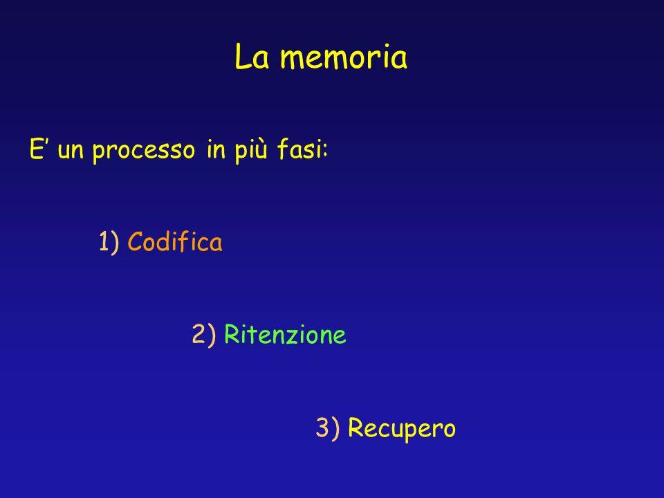 La memoria E' un processo in più fasi: 1) Codifica 2) Ritenzione