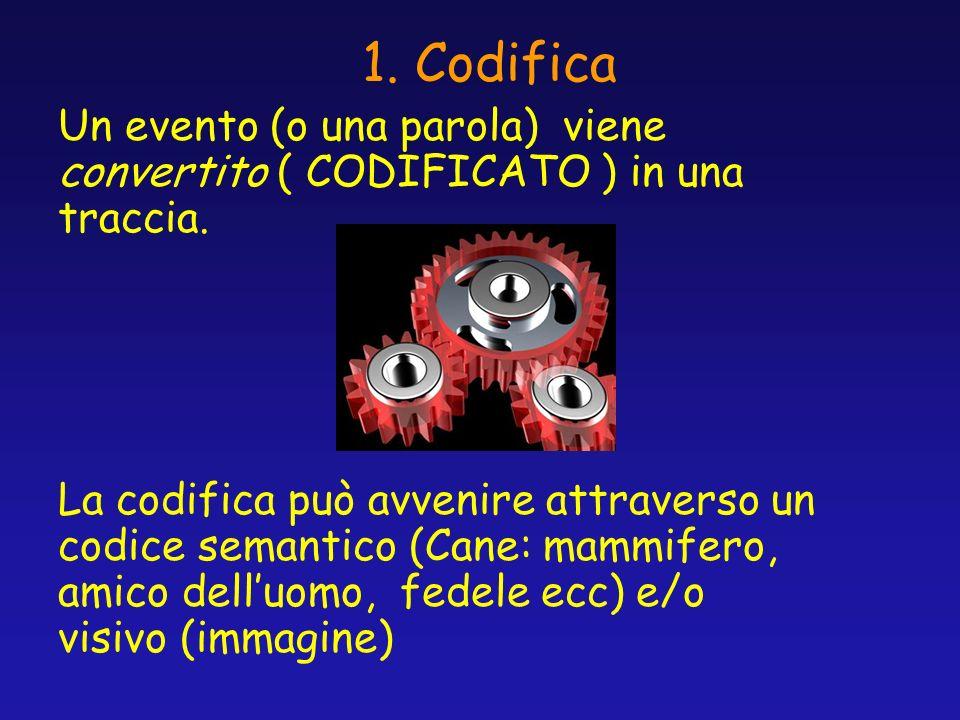 1. Codifica Un evento (o una parola) viene convertito ( CODIFICATO ) in una traccia.
