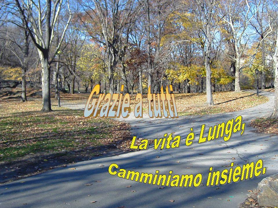 Grazie a tutti La vita è Lunga, Camminiamo insieme.