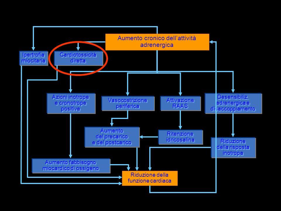 • Aumento cronico dell'attività adrenergica Ipertrofia miocitaria