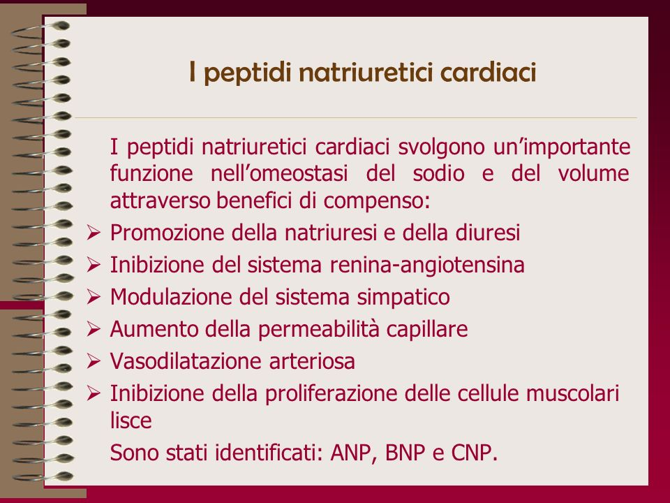 I peptidi natriuretici cardiaci