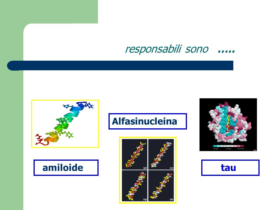 responsabili sono ….. Alfasinucleina amiloide tau
