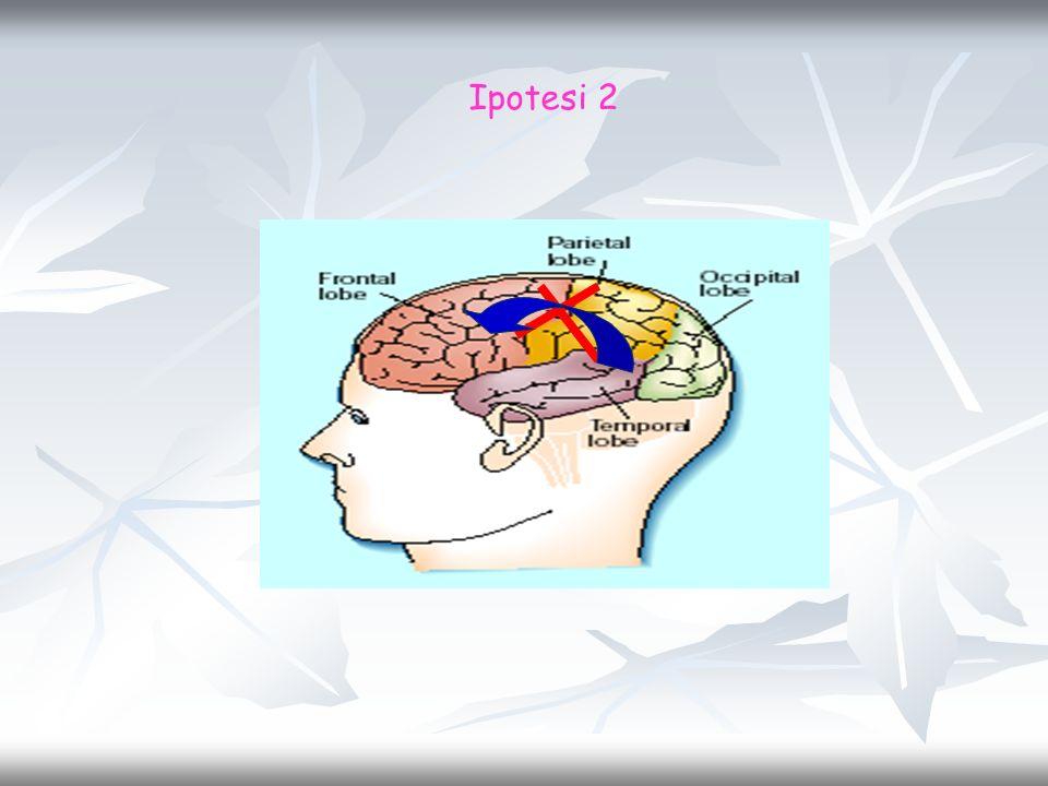 Ipotesi 2