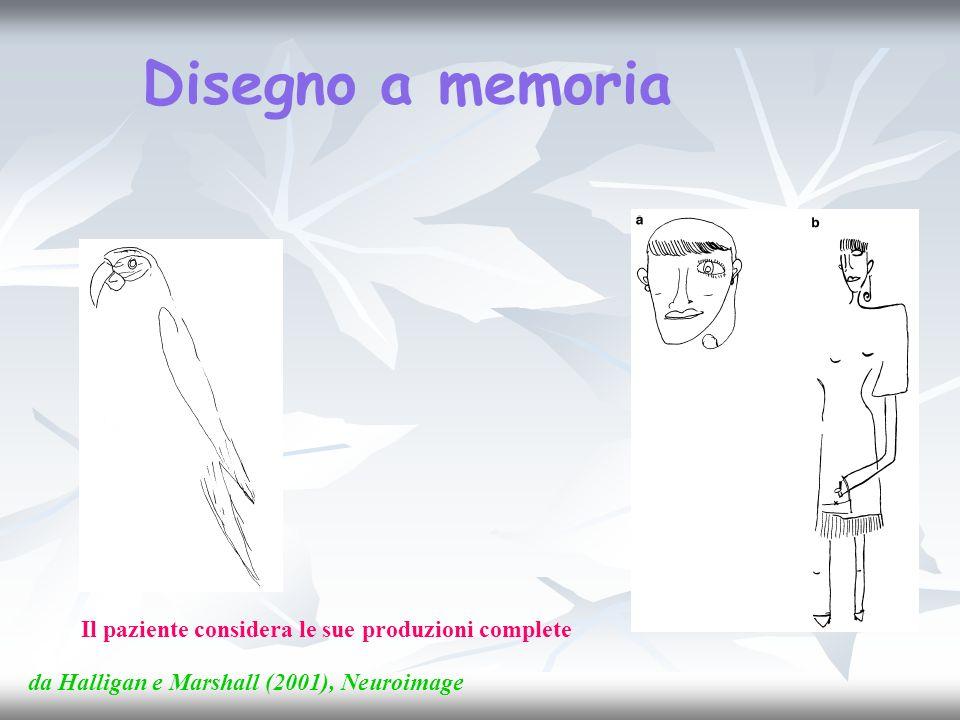 Disegno a memoria Il paziente considera le sue produzioni complete