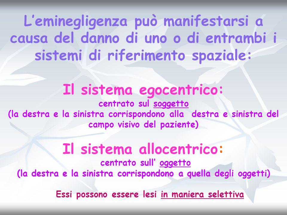 Il sistema egocentrico: Il sistema allocentrico: