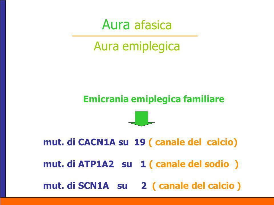 Aura afasica Aura emiplegica Emicrania emiplegica familiare