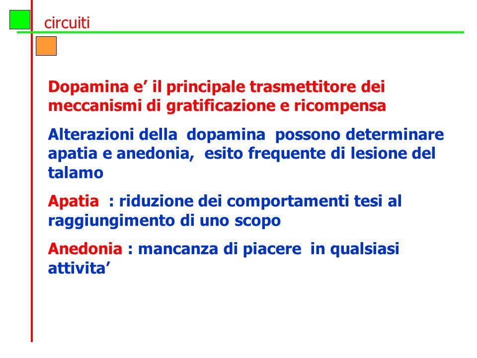circuiti Dopamina e' il principale trasmettitore dei meccanismi di gratificazione e ricompensa.