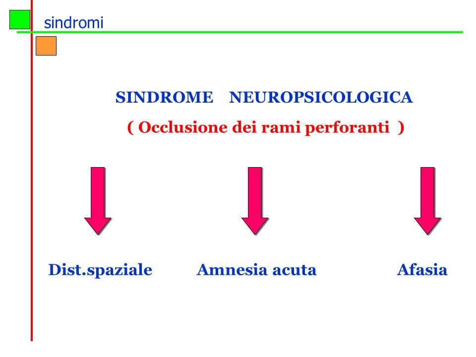 sindromi SINDROME NEUROPSICOLOGICA.