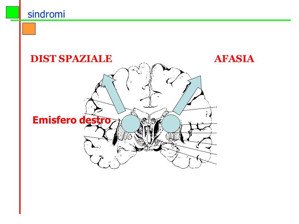 sindromi DIST SPAZIALE AFASIA Emisfero destro