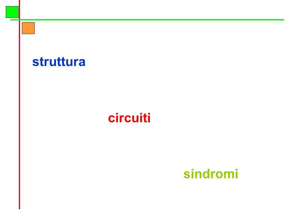 struttura circuiti sindromi