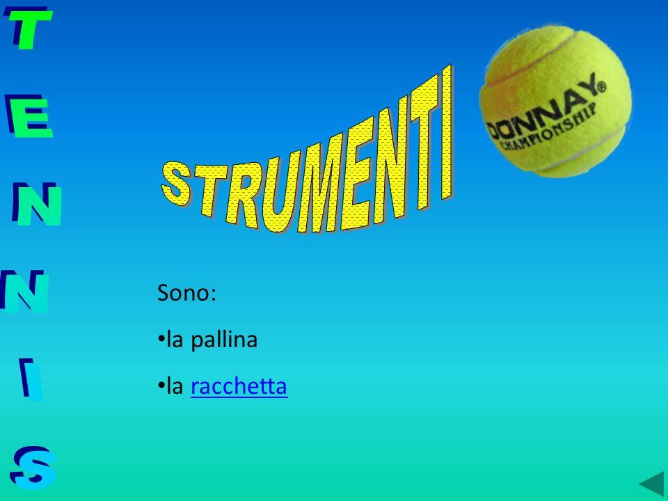 STRUMENTI TENNIS Sono: la pallina la racchetta