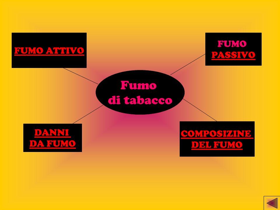 Fumo di tabacco FUMO FUMO ATTIVO PASSIVO DANNI COMPOSIZINE DA FUMO
