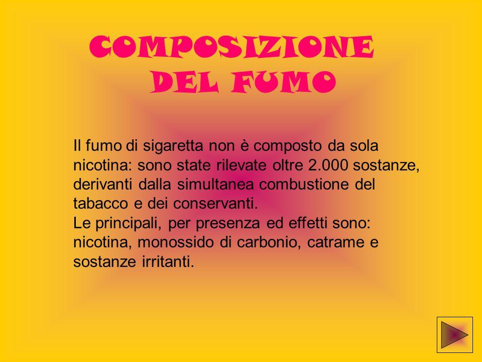 COMPOSIZIONE DEL FUMO.