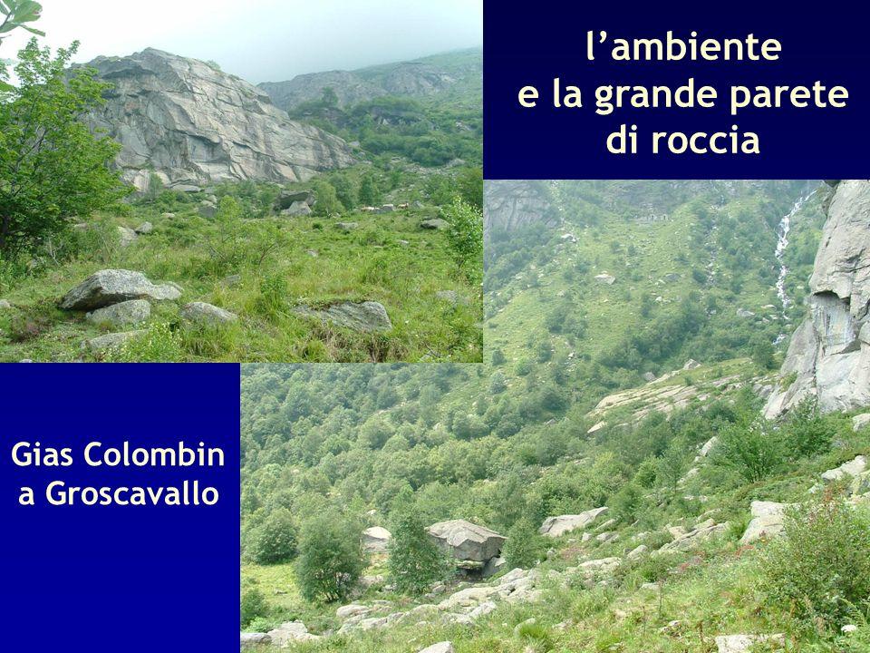 e la grande parete di roccia