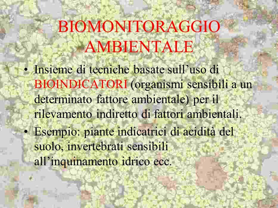 BIOMONITORAGGIO AMBIENTALE