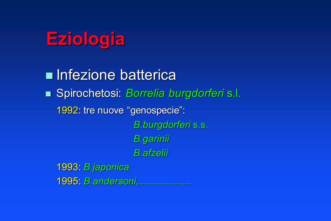 Eziologia Infezione batterica Spirochetosi: Borrelia burgdorferi s.l.