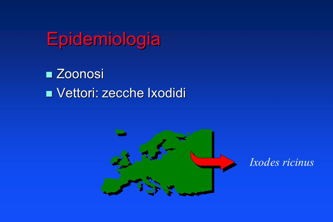 Epidemiologia Zoonosi Vettori: zecche Ixodidi Ixodes ricinus