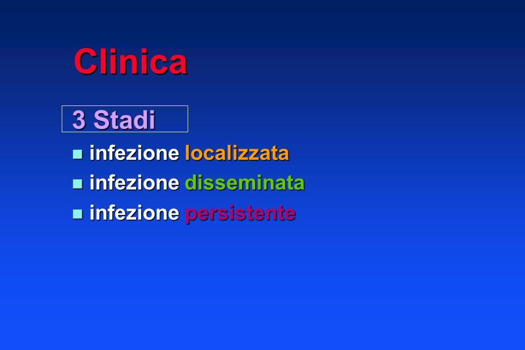 Clinica 3 Stadi infezione localizzata infezione disseminata