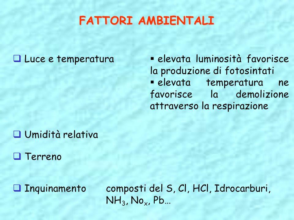FATTORI AMBIENTALI Luce e temperatura