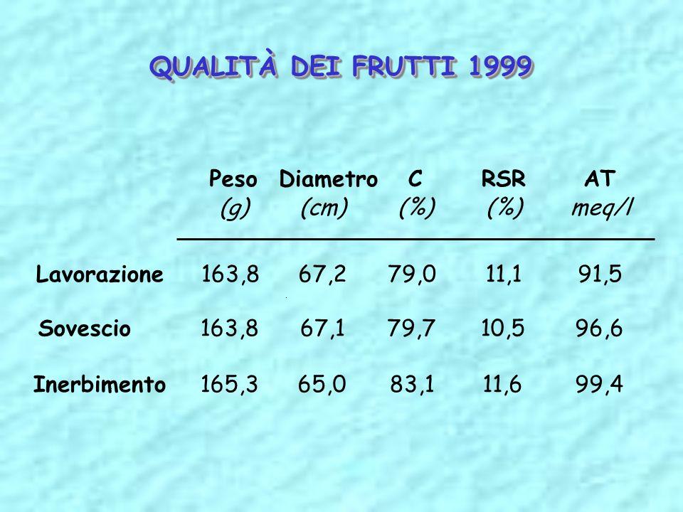 QUALITÀ DEI FRUTTI 1999 Peso Diametro C RSR AT (g) (cm) (%) (%) meq/l