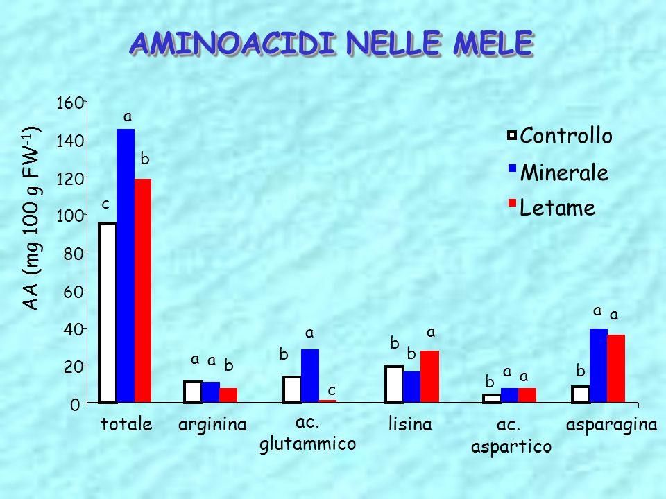 AMINOACIDI NELLE MELE Controllo Minerale Letame AA (mg 100 g FW-1)