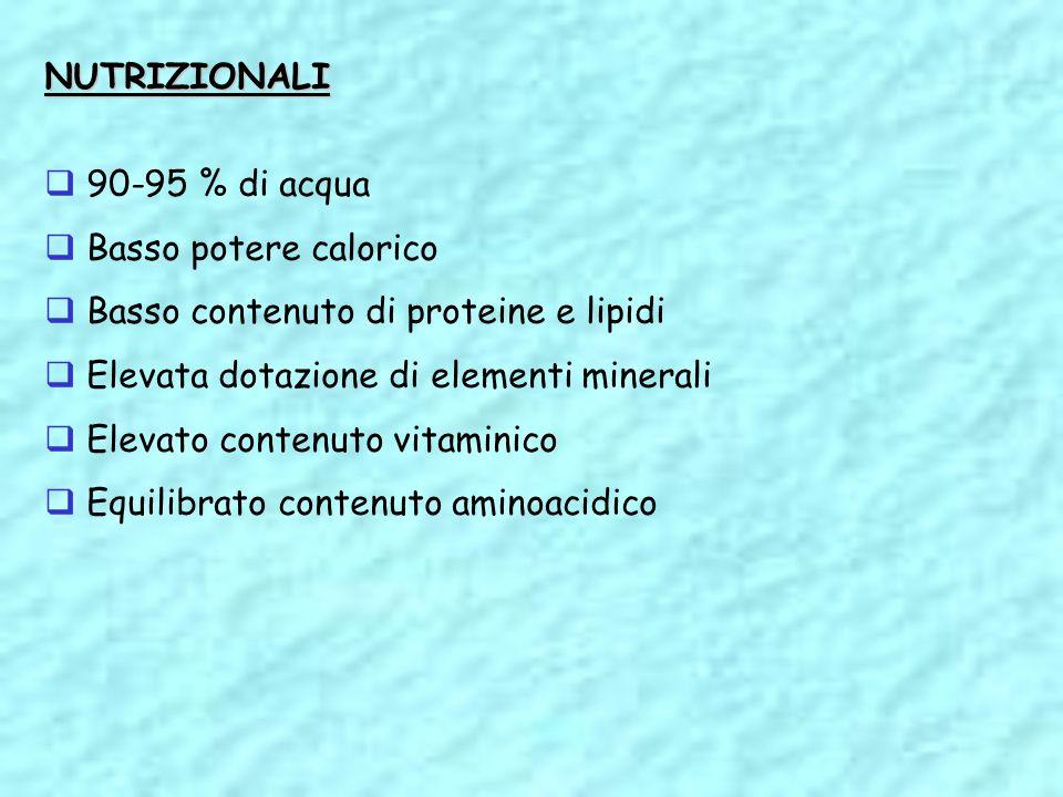 NUTRIZIONALI 90-95 % di acqua. Basso potere calorico. Basso contenuto di proteine e lipidi. Elevata dotazione di elementi minerali.