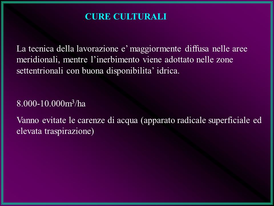 CURE CULTURALI