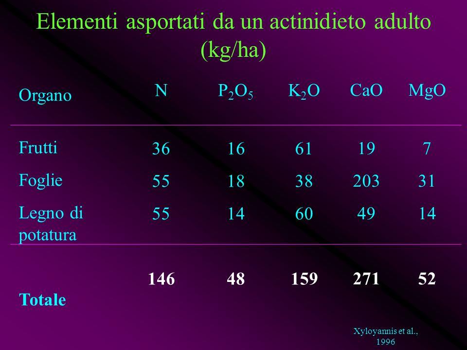 Elementi asportati da un actinidieto adulto (kg/ha)