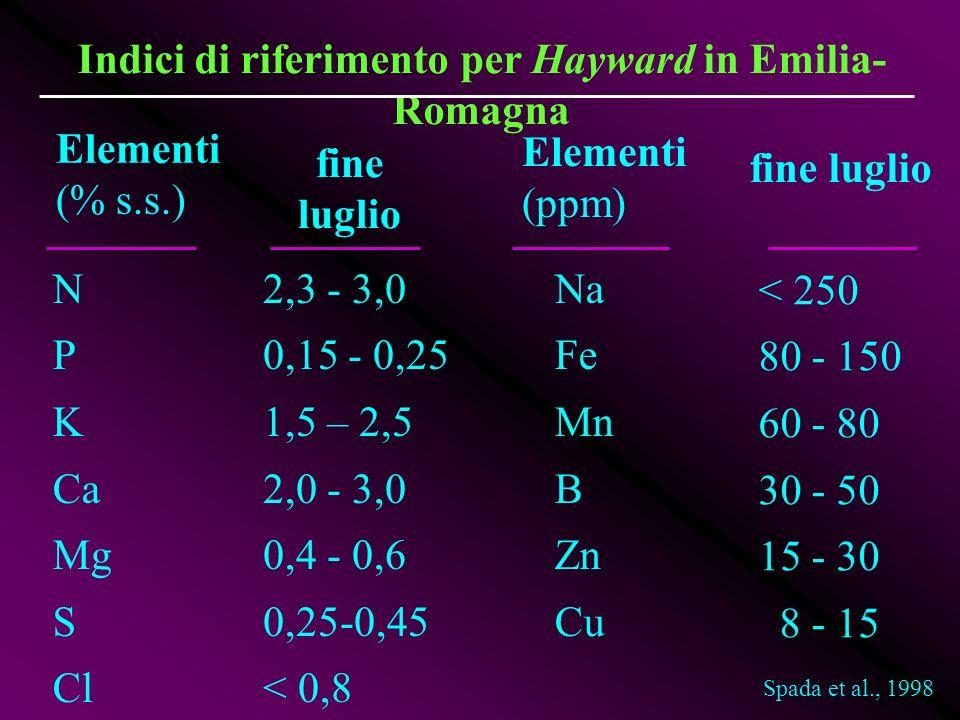 Indici di riferimento per Hayward in Emilia-Romagna